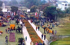 Garden Festival in Chandigarh
