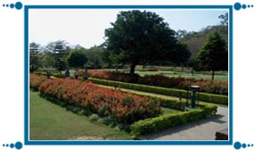 Shanti Kunj Garden of Chandigarh